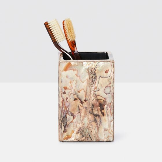 Marbleized Young Pen Shell