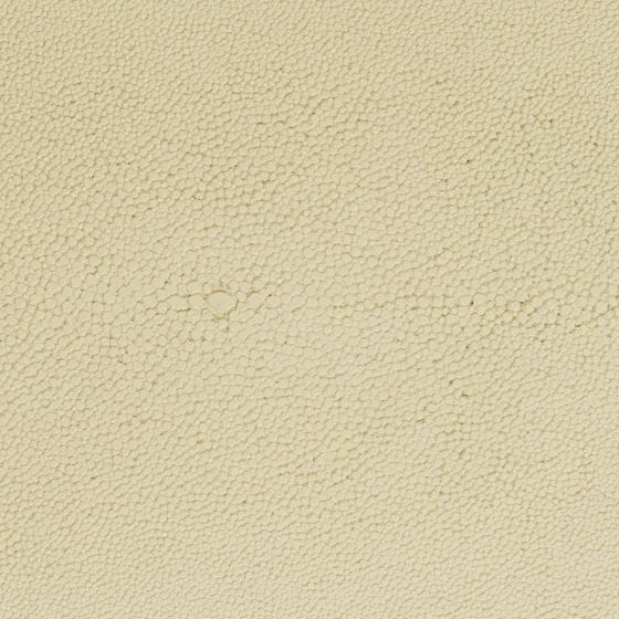Ivory Realistic Faux Shagreen Swatch